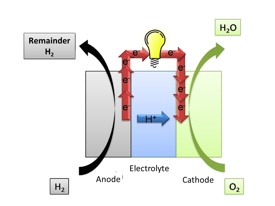 hydrogen fuel cell essay As time goes on, technological advances require more efficient sources of power at the forefront of research for these power sources are hydrogen fuel cells.